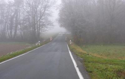 Heßloher Straße Senke und Wäldchen