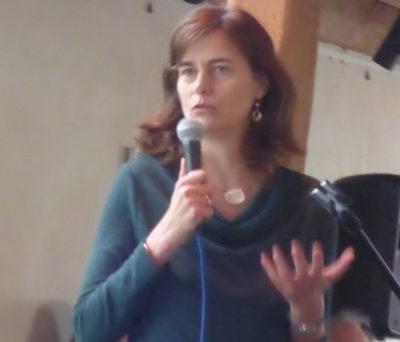 Alexandra Geese, Europaabgeordnete