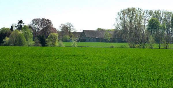 Bauernhof nähe der geplanten Trasse B239n