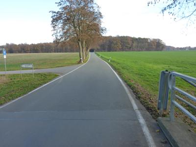 Ohrser Straße nach Lage - ohne Radweg