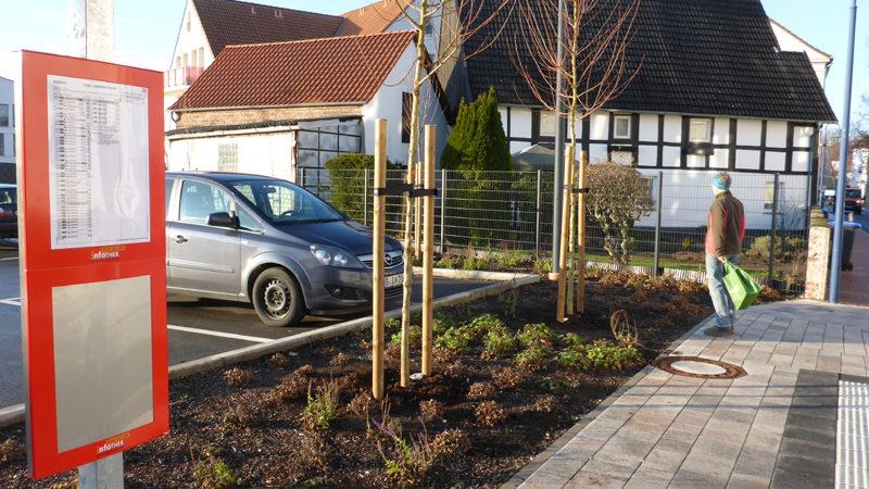 Bäume an der Haltestelle Lagenser Forum an der Rhienstrasse