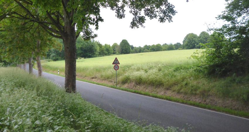 Weiße Brede - Ohrser Straße