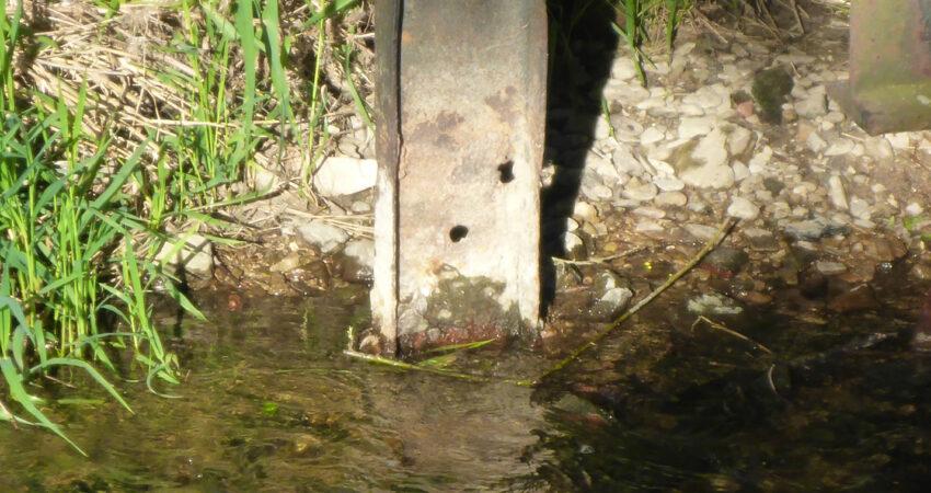 Angerosteter Pfeiler der Brücke am Umfluter