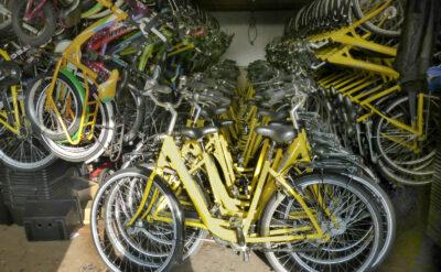 Fahrradausleihe: Viele Fahrräder warten auf Benutzung