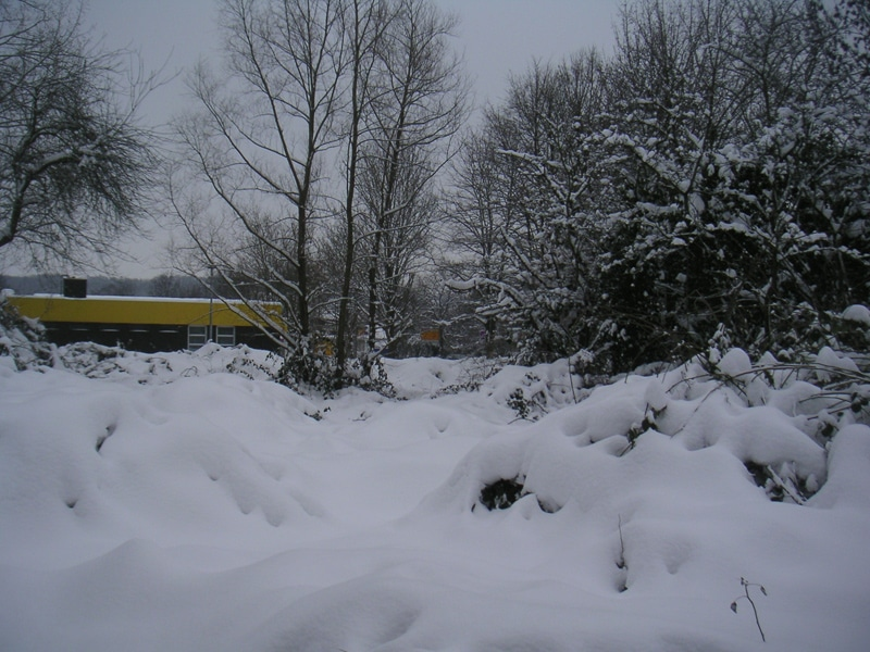 Ehemalige Post in Lage - versteckt hinter verschneiten Brombeerbüschen