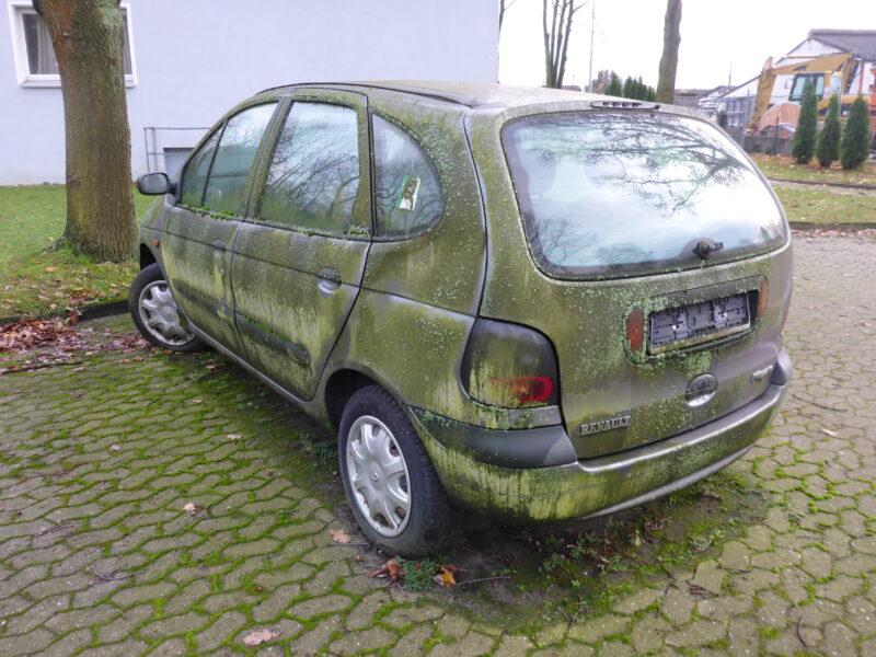 Bemoostes Auto auf einem Siedlungsparkplatz