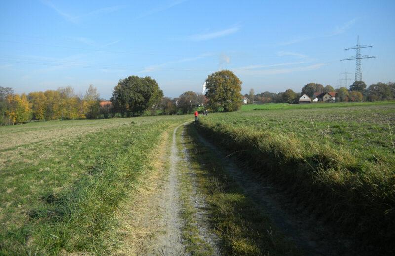 Sunderkamp: Verbindungsweg zwischen Ehrentrup und Breitenheide