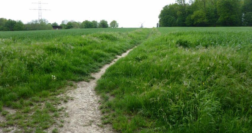 Weg in Ehlenbruch zwischen Haferkamp und Friedhof