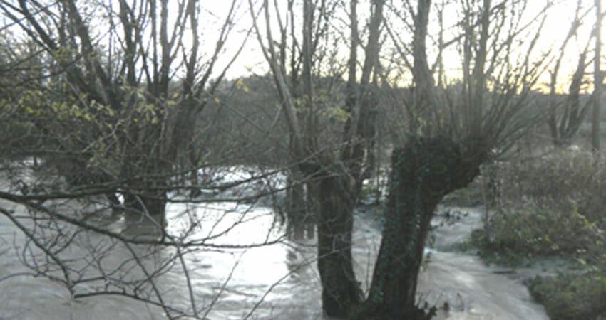 Hochwasser an der Werre